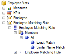 SSAS Employee Matching Rule